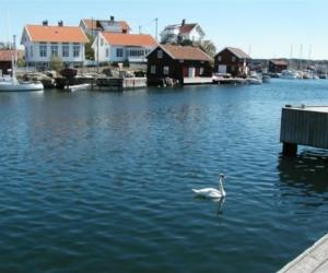 Lille Gullholm - Foto: Dena Landsman