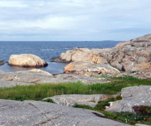 Härmanö vid havsbandet - Foto: Ronny von Frank-Einstein